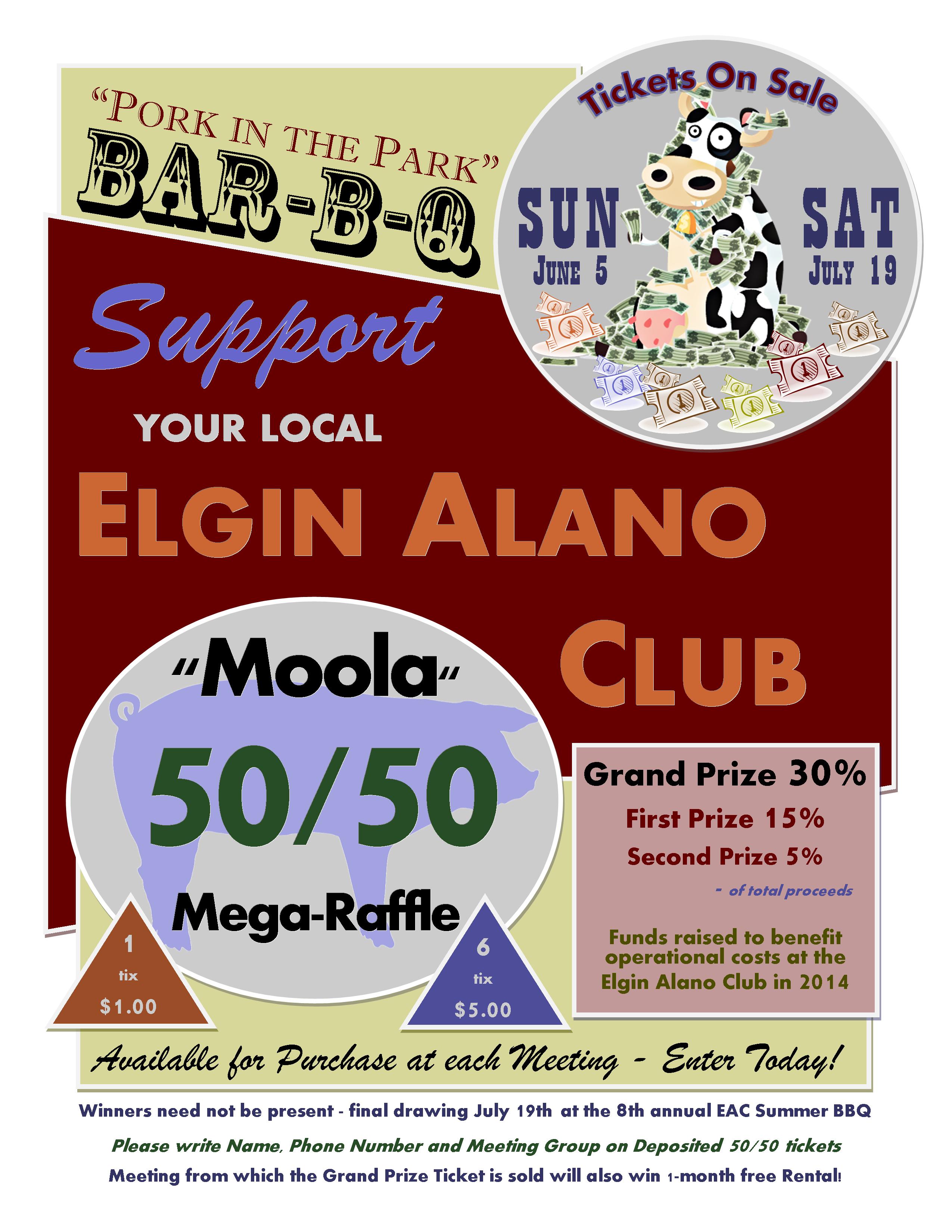 50/50 Mega Raffle - Summer BBQ 5