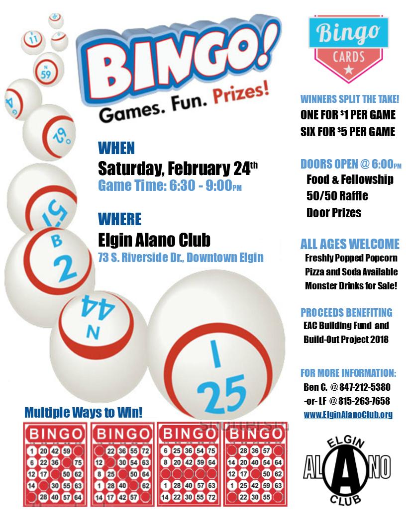 Bingo Night! 5